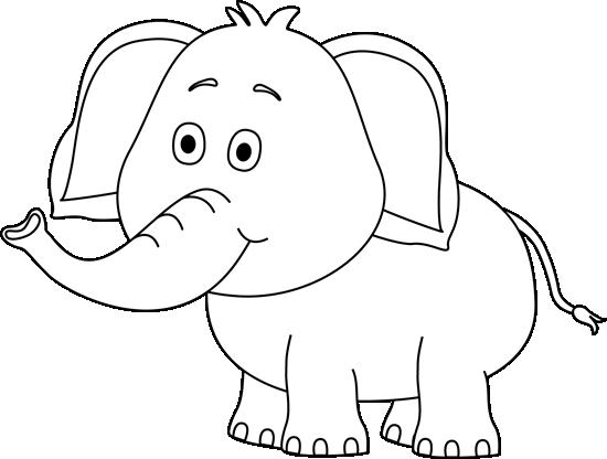 White Elephant White Elephant