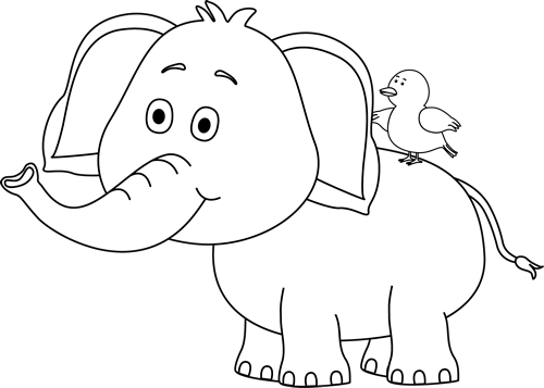 Black and White Elephant and Bird