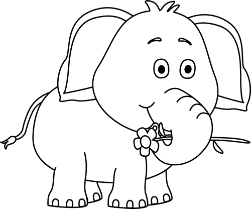 Black and White Elephant with a Flower