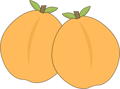 Pair of Apricots