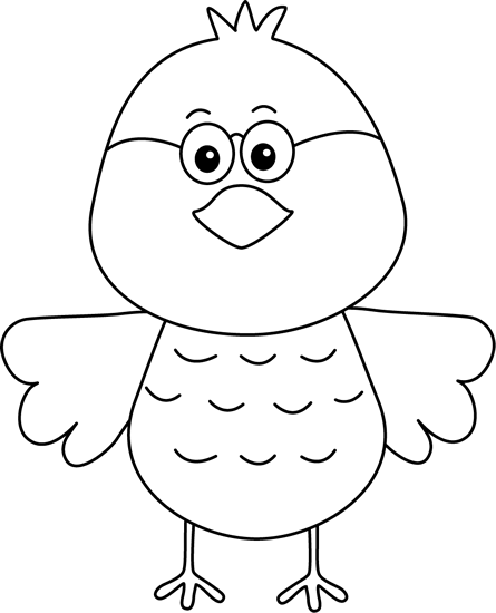 Black and White Bird Wearing Glasses
