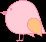 Pink and Orange Bird