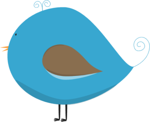 Short Blue and Brown Bird