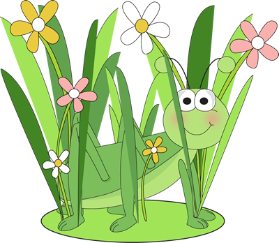 Grasshopper in a Patch of Grass