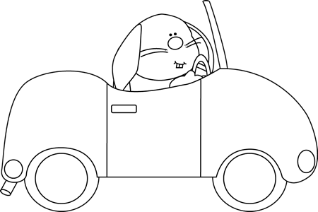 Black and White Bunny Driving a Car