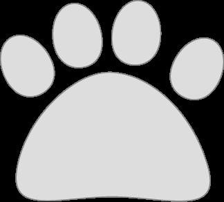Gray Cat Paw