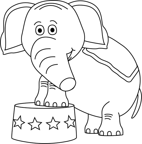 Black and White Circus Elephant