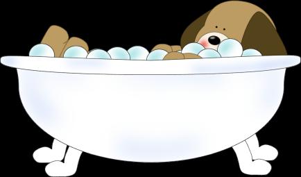 Girl Bathtub Bubbles Cat