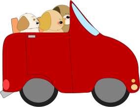 Dogs Driving a Car