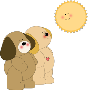 Dogs Smiling at the Sun