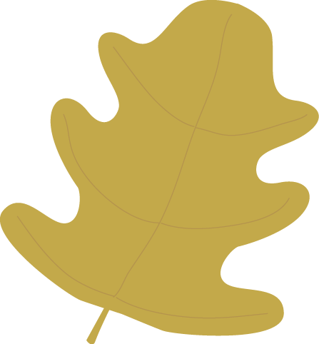 Gold Oak Autumn Leaf