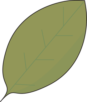 Green Autumn Leaf