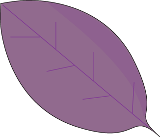 Purple Autumn Leaf