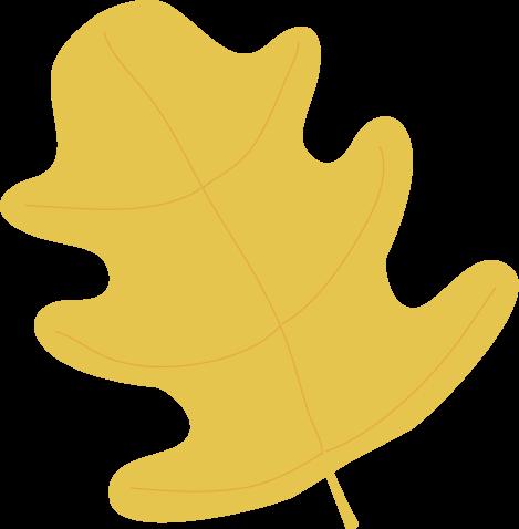 Yellow Oak Autumn Leaf