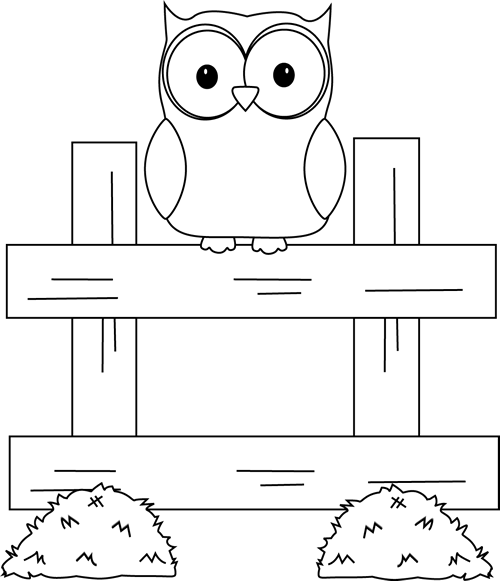 Black and White Farm Owl