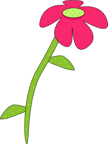 Pink and Green Droopy Flower