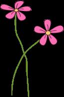 Skinny Pink Flowers