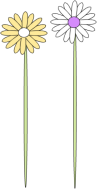 Two Flower