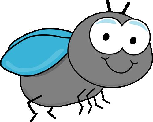 Gray Fly