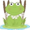 Frog Flower Pond