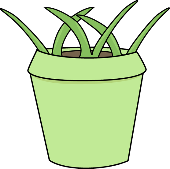 Flower Pot with Weeds