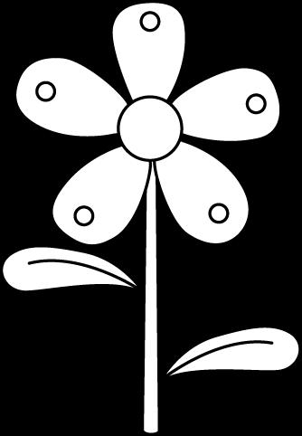 Black and White Garden Flower