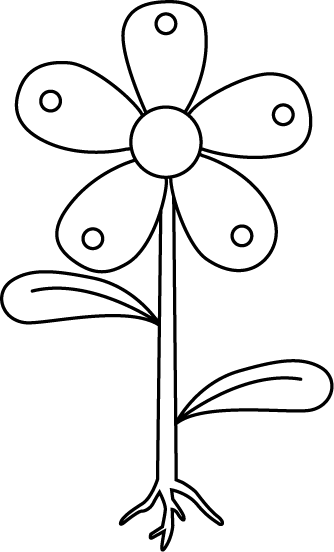 Black and White Garden Flower with Roots