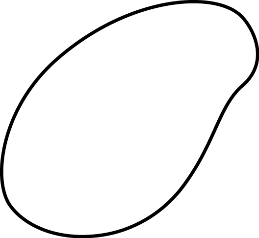 Black and White Plant Seed