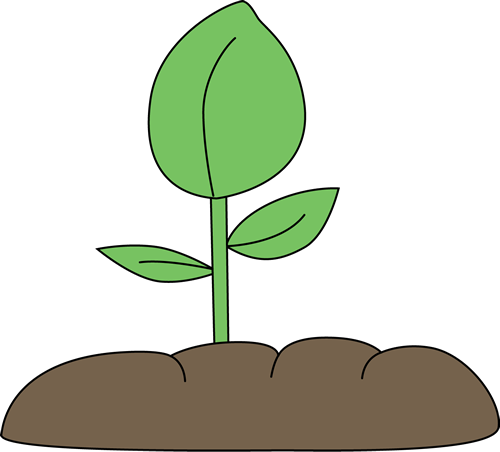 clipart of plants - photo #31
