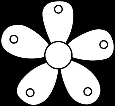 Black and White Single Garden Flower