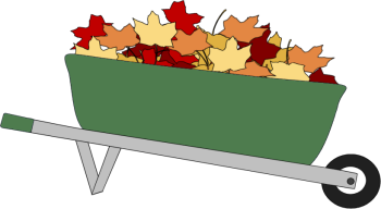 Wheelbarrow Filled with Leaves