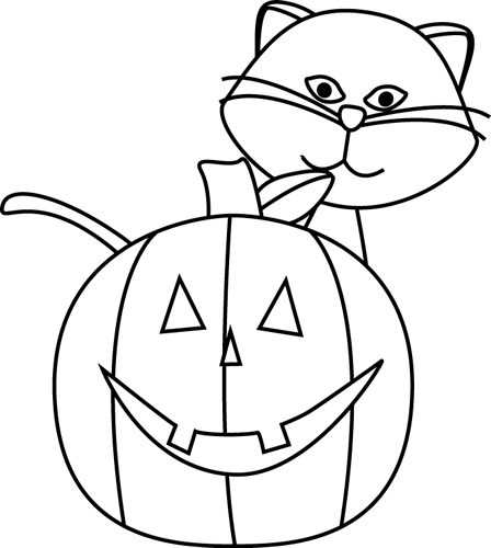 Black and White Cat and Jack-O-Lantern