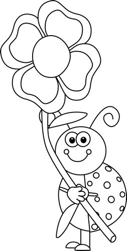 Black and White Laydbug Holding a Flower