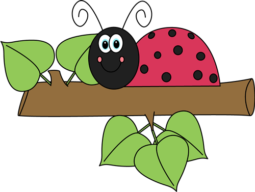 ladybug on leaf clip art
