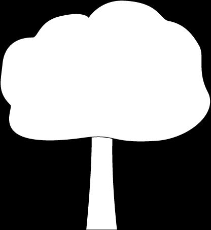 Black and White Oak Tree