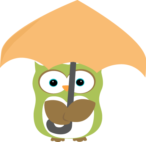 Owl Under Umbrella