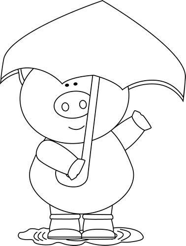 Black and White Black and White Pig in the Rain