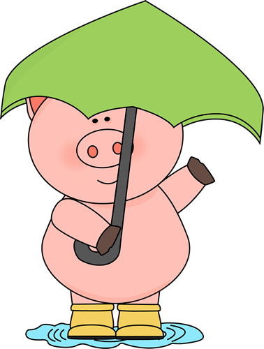 Pig in the Rain