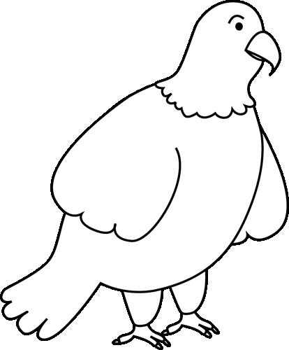 Black and White Bald Eagle