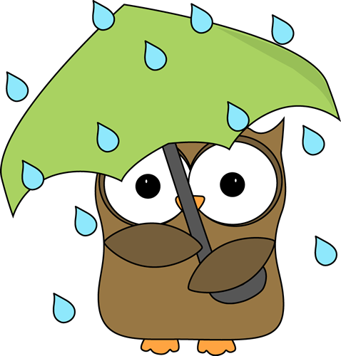 Rainy day owl
