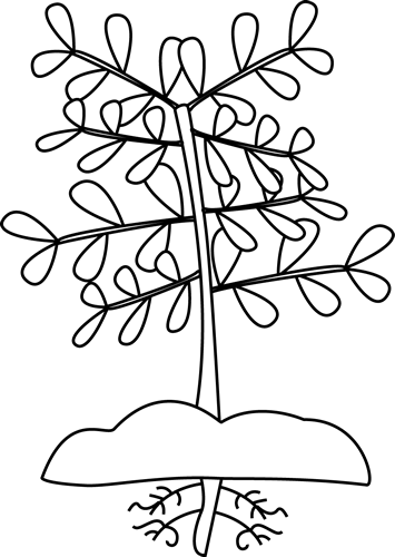 Black and White Plant with Roots Clip Art - Black and ...