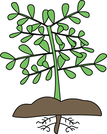 plant with roots clip art plant with roots vector image rh mycutegraphics com clipart planet clip art plants and animals