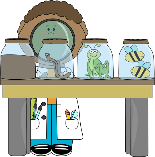 Scientist Inspecting Insects