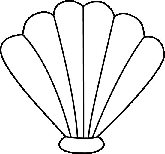 Black and White Sea Shell