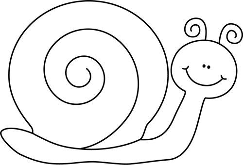 Black and White Snail