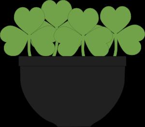 Pot of Shamrocks