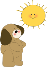 Dog Looking at Sun