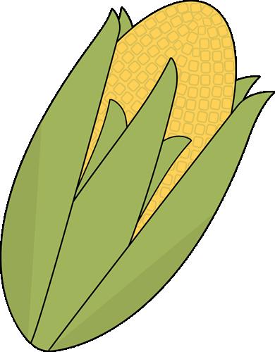 Ear of Corn