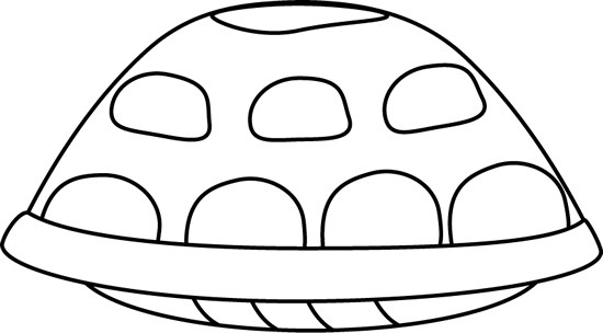 Black and White Turtle Shell