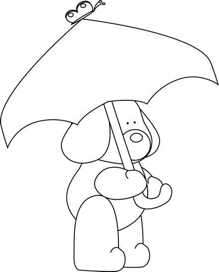 Black and White Dog Under an Umbrella
